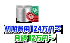 WEBシステム開発Mプラン